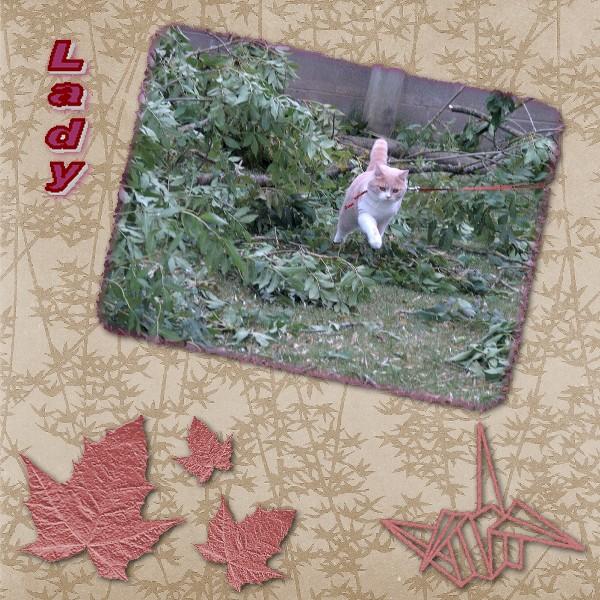ladykitakideninigoes.jpg
