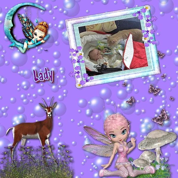 ladykitsymphonieferiqueqp2deladyblogtrainchezlouisesortielle26avril.jpg